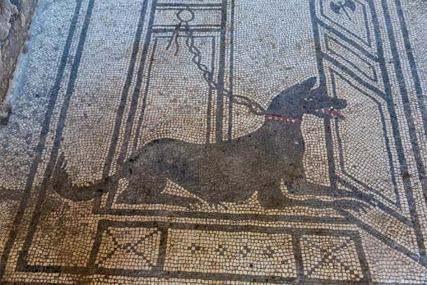 """A famous Pompeii mosaic which could be turned into thousands of """"cursed"""" Pompeii artifacts, if you believed in bad luck and dark destiny. ( Sergii Figurnyi / Adobe Stock)"""