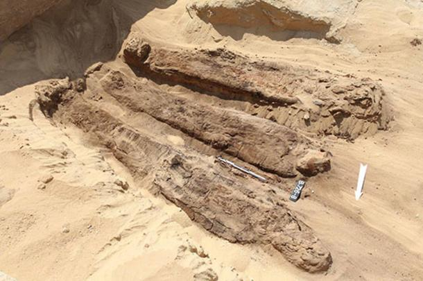 The majority of the mummies found near Djoser pyramid were laid to rest with only modest arrangements