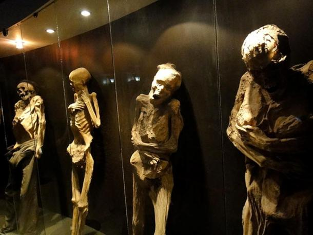 Some of the mummies in the museum in Guanajuato.