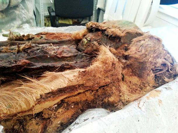 'We saw that the body was almost fully mummified, thanks to copper - or bronze - plates, except for the right hand and his legs.'