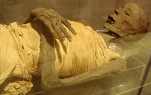 The mummified remains of 'Usermontu'.