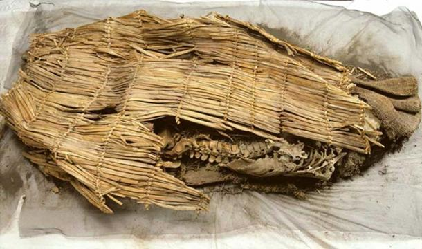 The mummy discovered.