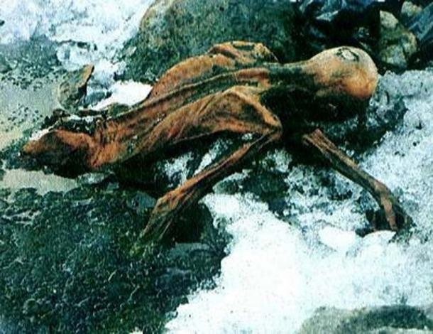 The mummy of Otzi, as it was found