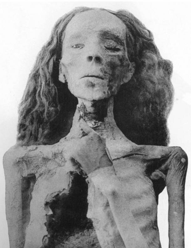 The mummy of Queen Tiye, now in the Egyptian Museum.