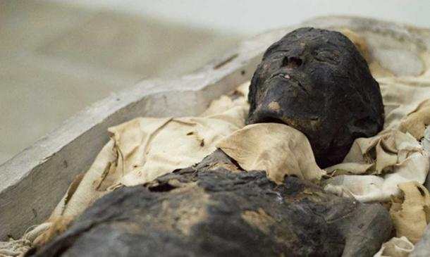The mummy of Ta-Kush.