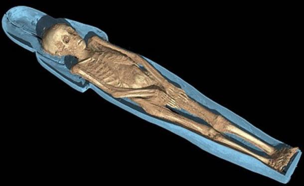 The mummy of Tjayasetimu