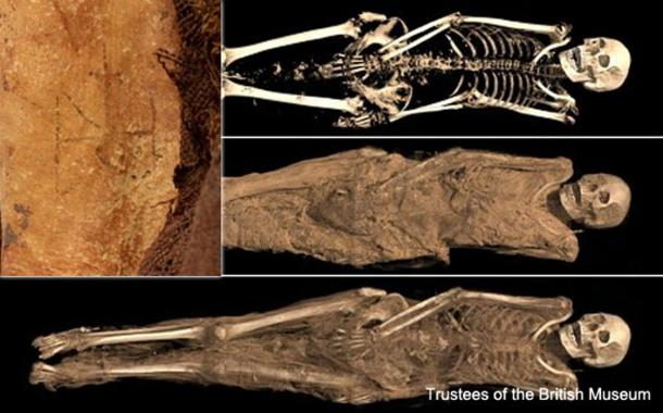 The mummy with its tattoo of archangel Michael.