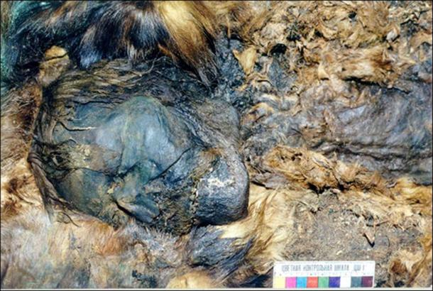 Five mummies were found to be shrouded in copper, while also elaborately covered in reindeer, beaver, wolverine or bear fur.