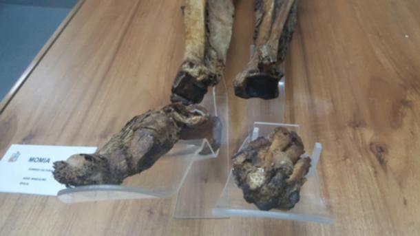 The mummy of Guano.