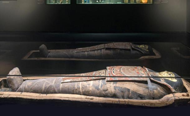 The Egyptian Mummy on display in the Israel Museum.