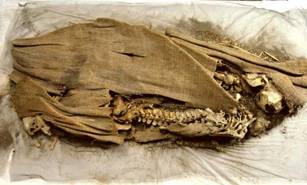 Another photo of the mummy discovered by the Wheelers.