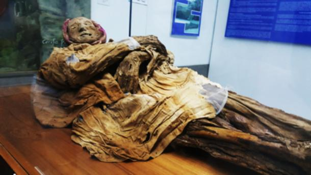 The mummy of Guano.