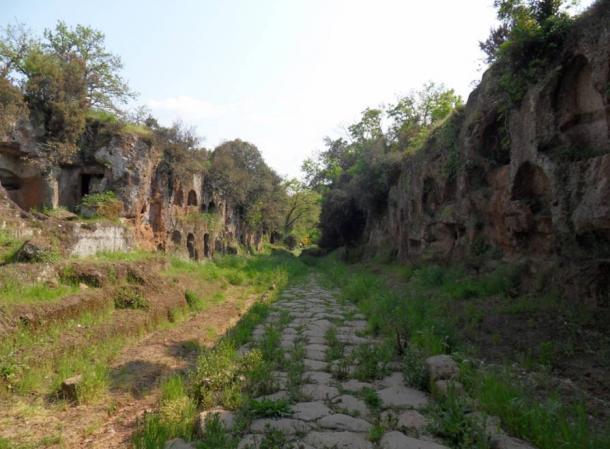 "The necropolis of ""Tre ponti"" near Falerii."