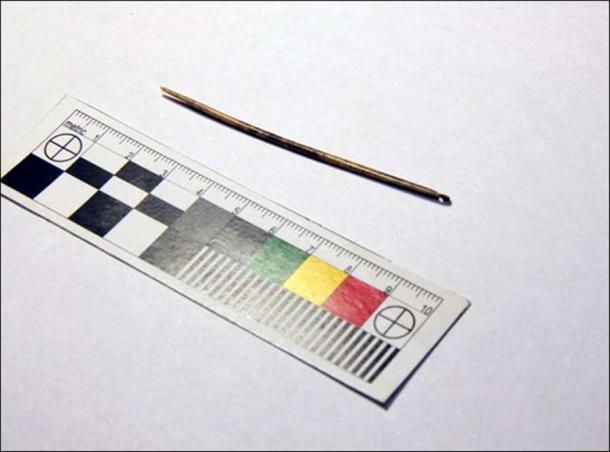 World oldest needle found in Denisova cave. Picture: Mikhail Shunkov, Vesti