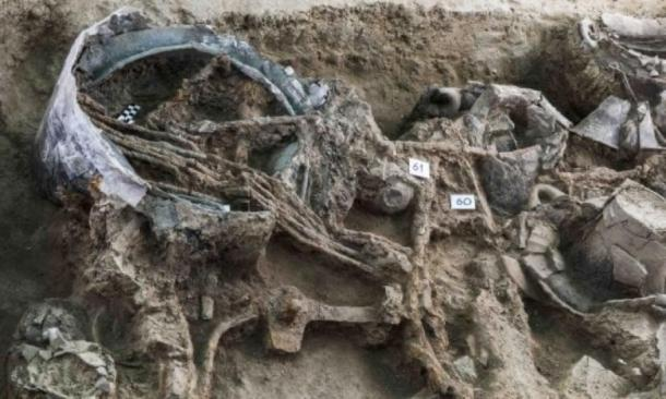 Other objects in situ: a bronze situla (bucket/pail), a bundle of iron skewers and parts of the chariot wheels. (Image: Pierluigi Giorgi / © Antiquity Publications Ltd)