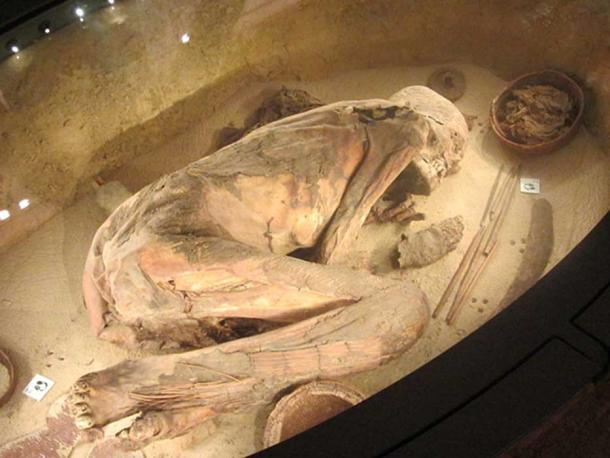 Remains of the oldest Egyptian in the world, Turin's Egyptian Museum, Italy. (CC BY-SA 3.0)