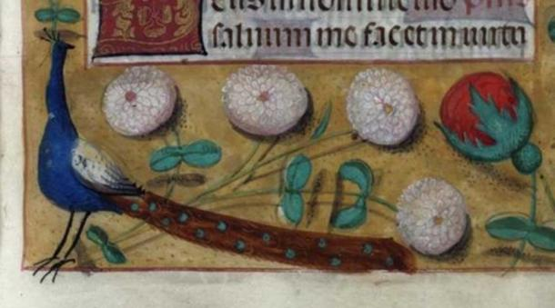 An opulent Christmas feast. Courtesy of the Brotherton Library, University of Leeds