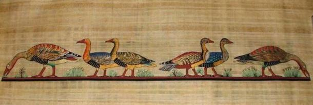 The painting Meidum Geese, found in the tomb of a pharaoh's son, may be fake.