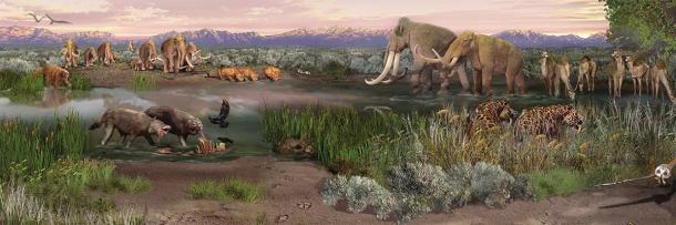 Una pintura de paisaje paleontológico que muestra mamíferos extintos de la Edad de Hielo que deambulan por el área del Parque Nacional White Sands durante el final de la última Edad de Hielo, incluidos mamuts, perezosos, lobos crueles, conductores de camellos y más. (Dominio publico)
