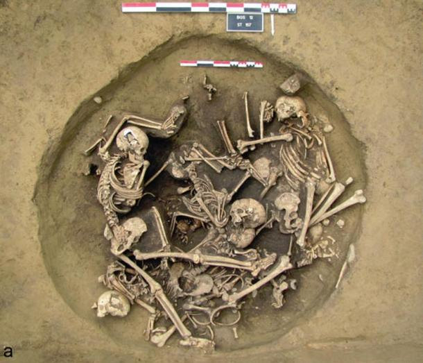 A photo and a drawing of the skeletons in a layer above the layer that contained the amputated human arms.