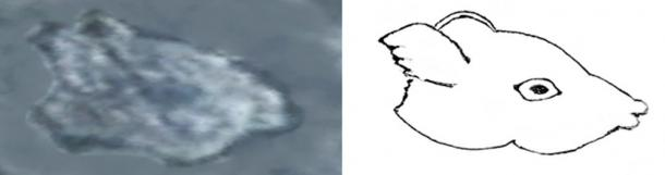 Original photographs with outline defining sketch of two animal sculptures discovered on the Island of Newfoundland.
