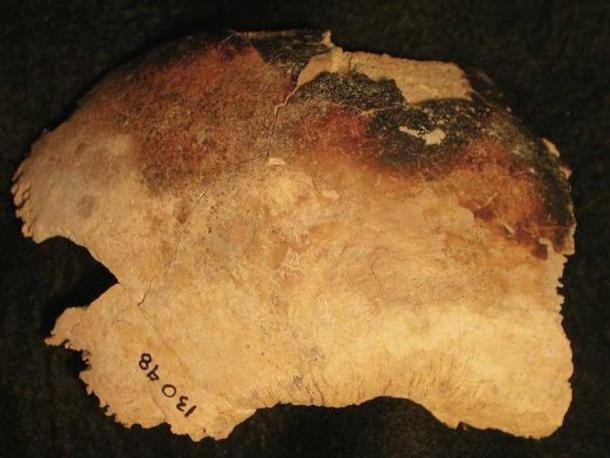 This piece of skull that was smashed and burned was excavated from the deserted Yorkshire village of Wharram Percy.
