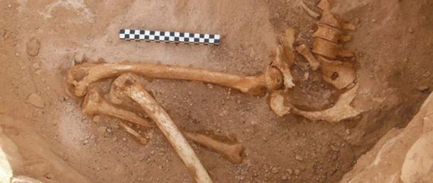Remains of the lower body of a pregnant woman found in a tomb in Timna.