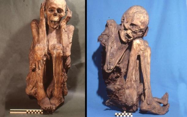 A collection of naturally preserved mummies originating from the ancient site of Cusco, Peru.