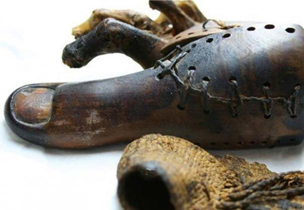 A 3000-year-old prosthetic big toe.