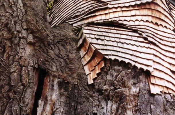 Le Chene Chapelle The Ancient Oak Tree Chapel As Old As