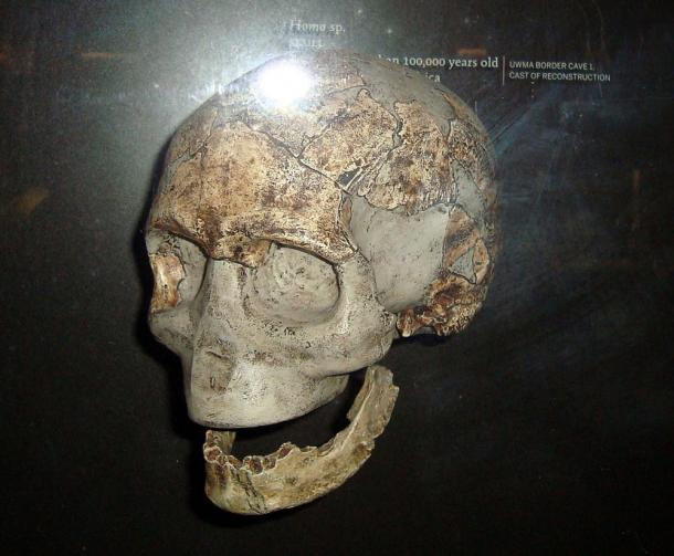 A reconstructed Homo sapiens skull from about 100,000 years, found in a cave in South Africa; at the site in Libya in North Africa, researchers found jawbones about 80,000 years old.