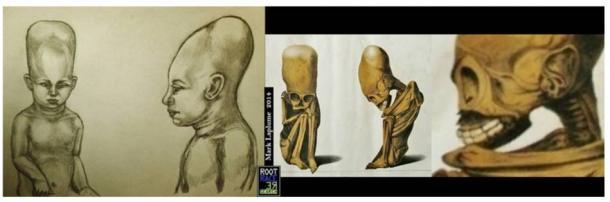 Mark Laplume's reconstruction of the Rivero and Tschudi's foetus