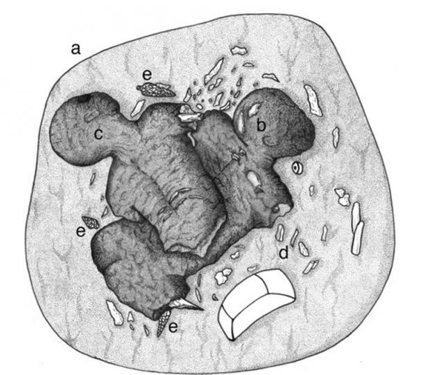 Artist's reconstruction of Burial PP7TT-01: (a) outline of cremation pit; (b) Individual 1B; (c) Individual 1A; (d) sherd fragment; (e) obsidian points.