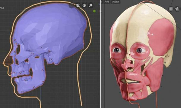 Steps in the facial reconstruction process. (FAPAB Research Center)
