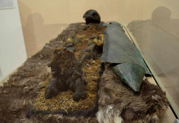 Similarly, a red-haired man was found, protected from chest to foot by copper plating. In his resting place, was an iron hatchet, furs, and a head buckle made of bronze depicting a bear. Pictures: Kate Baklitskaya,