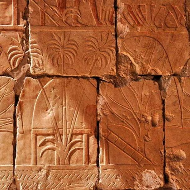 A relief depicting incense and myrrh trees obtained in Hatshepsut's expedition to Punt.