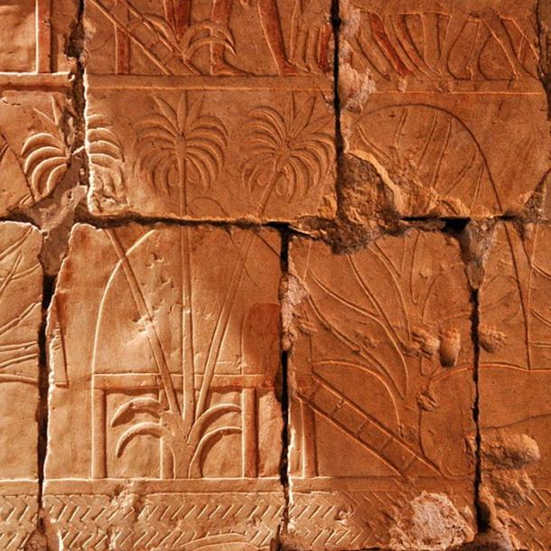 This relief depicts incense and myrrh trees obtained by Hatshepsut's expedition to Punt.