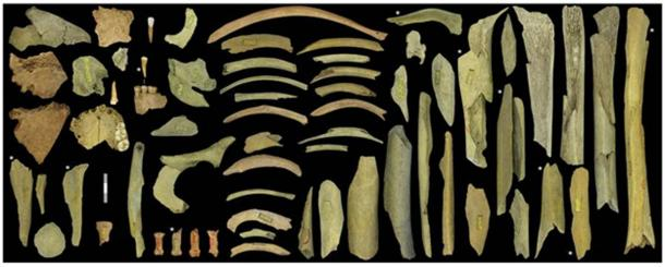 Highly fragmented remains of Neanderthals from a cave in Belgium show cutting and smashing.