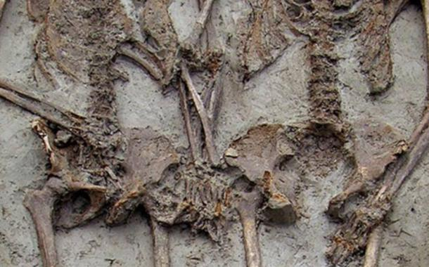 The remains of a couple holding hands in Modena, Italy