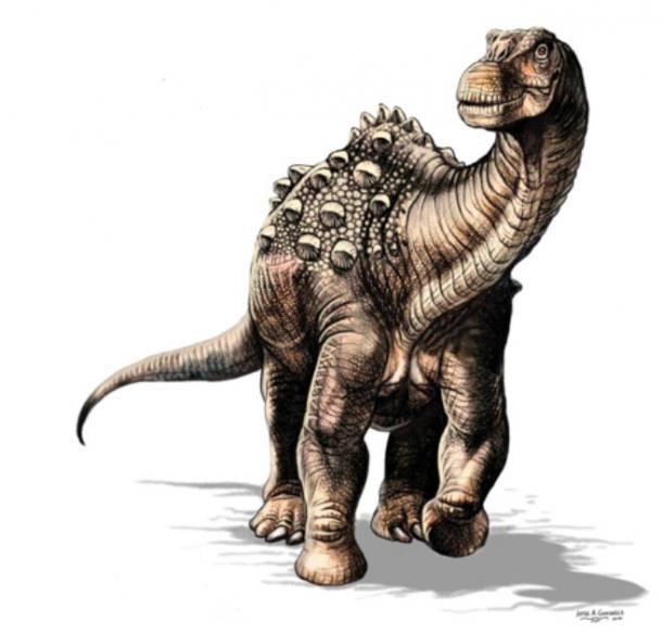 An artistic representation of the Yamanasaurus lojaensis. (Jorge González)
