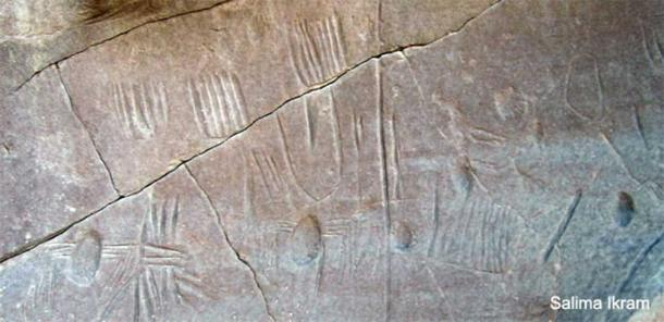 A rock panel in the Kharga Oasis in Egypt, which is believed to contain the only known example of 'spider' rock art in Egypt.