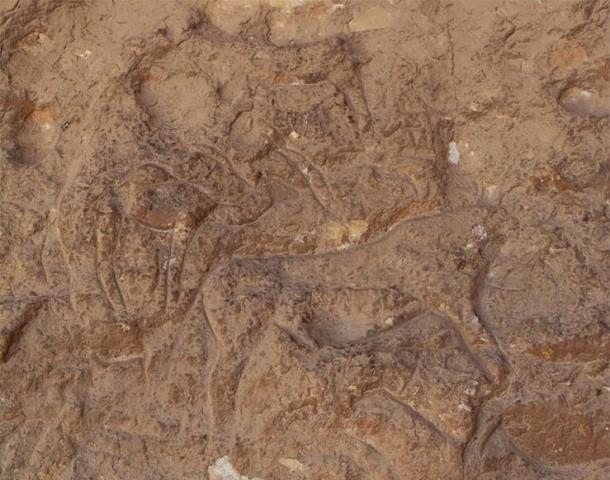 The rock carvings are of a type not seen before in the region. Photo courtesy Ministry of Antiquities