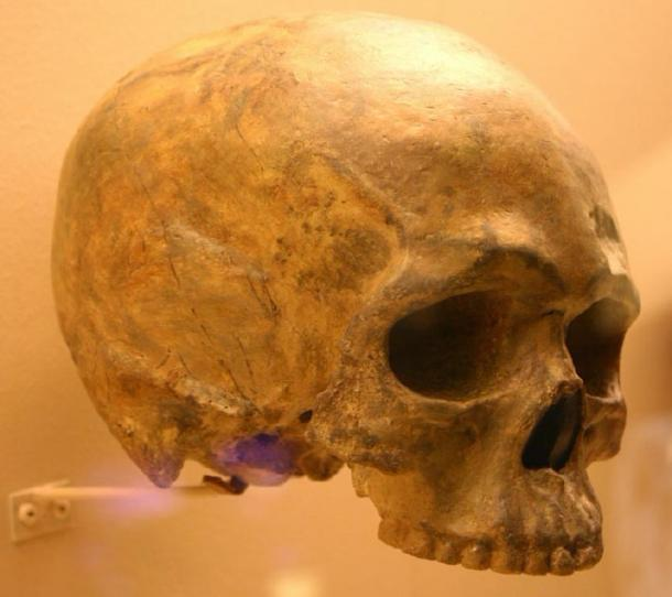 A rounded skull fossil was found in Ethiopia, one of the locations of human origins. (Ryan Somma / CC BY-SA 2.0)