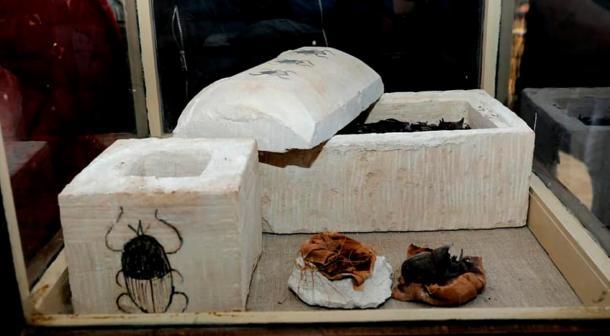The two sarcophagi containing mummified scarab beetles.