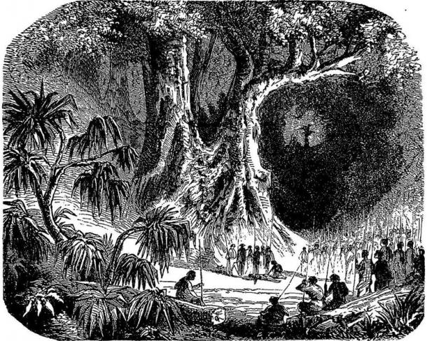 a similar process to the 'sassywood ritual', inhabitants of Madagascar gave the accused a poisonous tangena nut. In the 1820s,