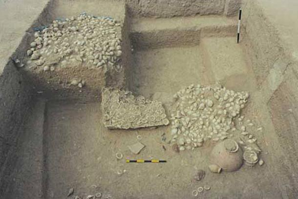 The shell workshop, with thousands of unfinished and finished products and raw shell at another of the Indus Valley archaeological sites in Gujarat - Gola Dhoro (Bagasra).