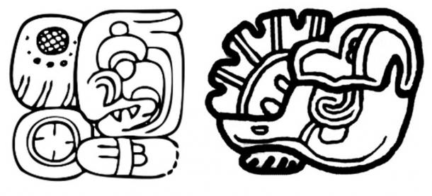 "Left: the ""signature"" glyph of Ha' K'in Xook. Right: The glyph of Yax Ehb' Xook, dynastic founder of Tikal."