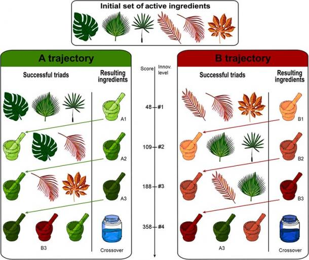 In the simulation, agents had to find successive innovations by combining virtual medicinal plants. They were given an initial set of six medicinal plants, which could be combined in triads to generate new drugs (A1, A2, A3, B1, B2, and B3) of increasing medicinal value. At the fourth level of innovation, a crossover of trajectories A and B produces the two medicines with highest efficiency (crossovers 1 and 2). The virtual experiment was finished when a crossover was found. (Figure and simulation were adapted from M. Derex,  R. Boyd)