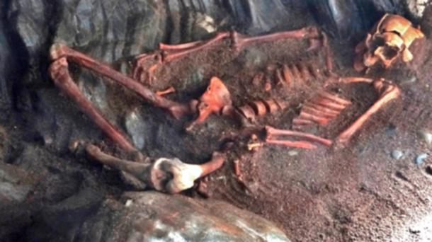The skeleton was discovered during a cave excavation in the Black Isle.