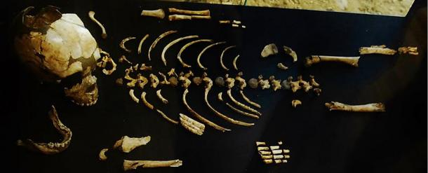 The complete skeleton of a Neanderthal child discovered on the site of Marsal Roc, Dordogne in France